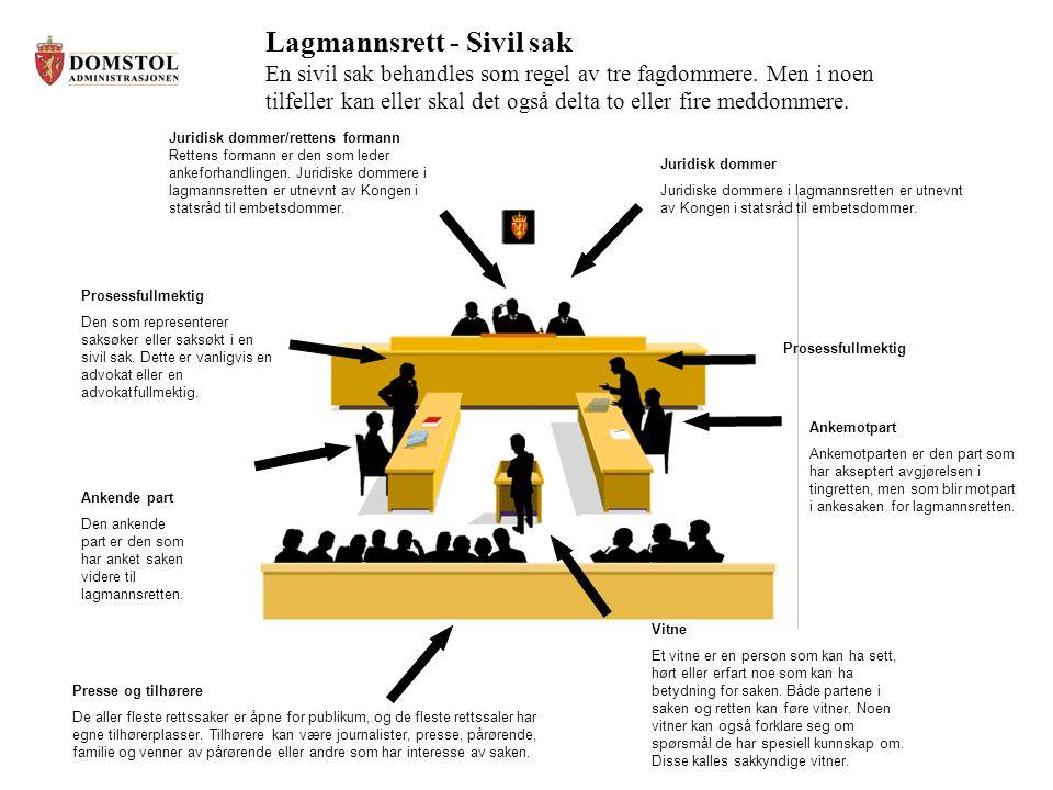Lagmannsrett - Sivil sak En sivil sak behandles som regel av tre fagdommere.