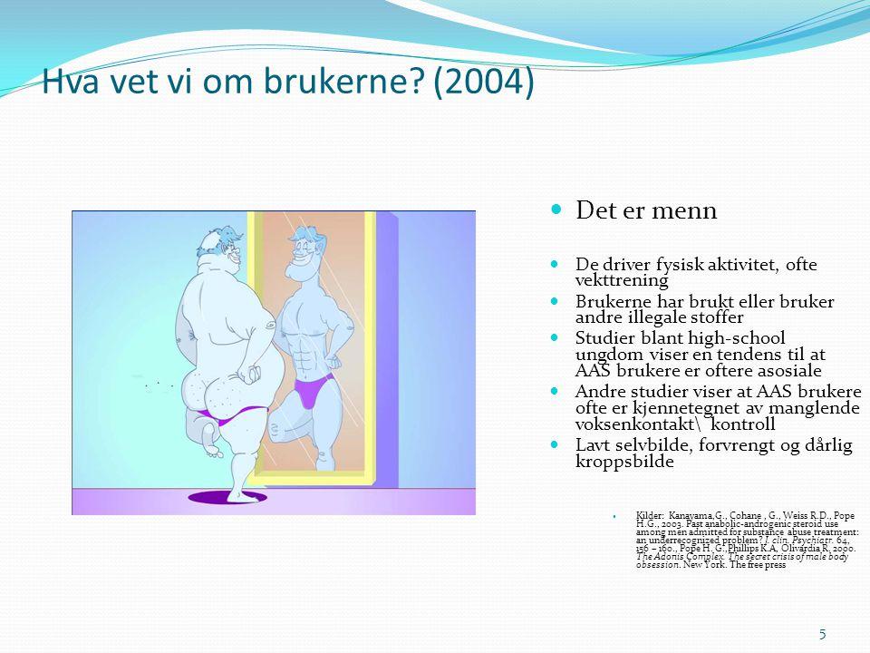 Hva vet vi om brukerne? (2004) 5  Det er menn  De driver fysisk aktivitet, ofte vekttrening  Brukerne har brukt eller bruker andre illegale stoffer