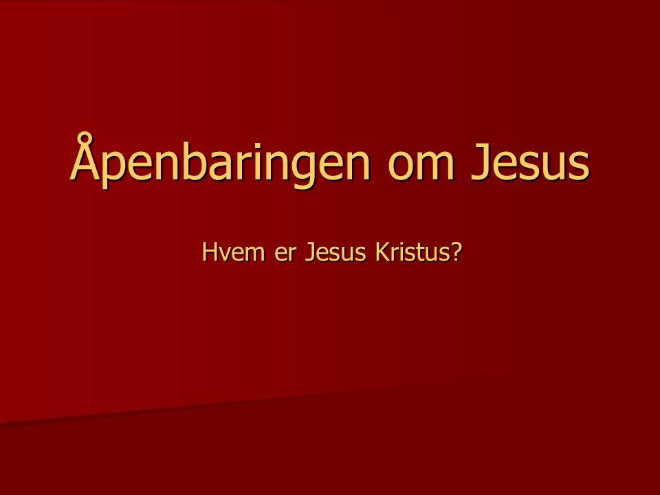 Kristendommen er Jesus Kristus  Dette er det evige livet, at de kjenner deg, den eneste sanne Gud og ham du har utsendt.