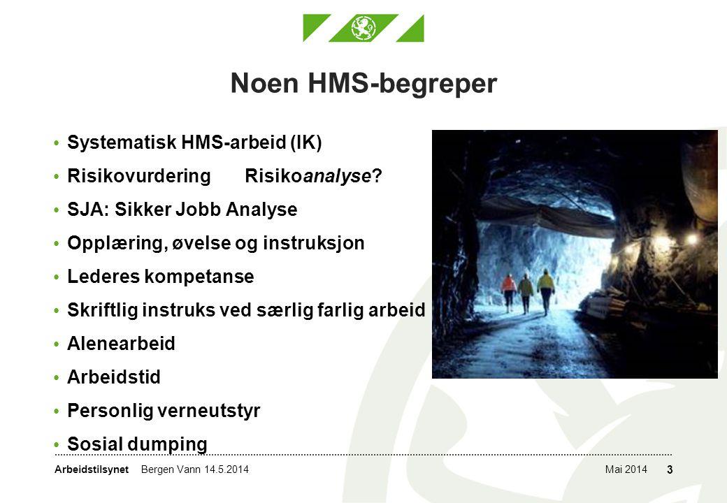Arbeidstilsynet Noen HMS-begreper • Systematisk HMS-arbeid (IK) • Risikovurdering Risikoanalyse? • SJA: Sikker Jobb Analyse • Opplæring, øvelse og ins