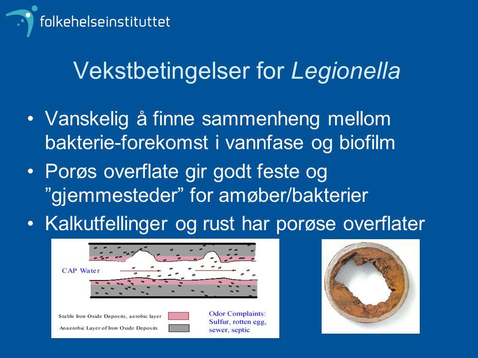 """Vekstbetingelser for Legionella •Vanskelig å finne sammenheng mellom bakterie-forekomst i vannfase og biofilm •Porøs overflate gir godt feste og """"gjem"""