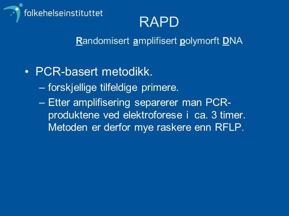 RAPD Randomisert amplifisert polymorft DNA •PCR-basert metodikk. –forskjellige tilfeldige primere. –Etter amplifisering separerer man PCR- produktene