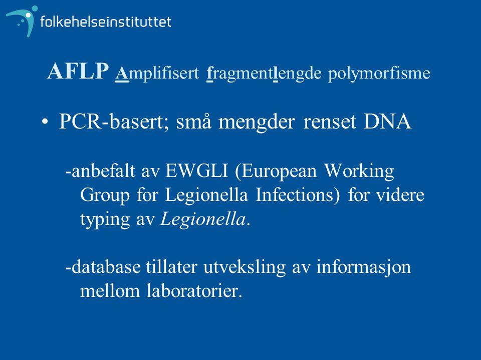 AFLP Amplifisert fragmentlengde polymorfisme •PCR-basert; små mengder renset DNA -anbefalt av EWGLI (European Working Group for Legionella Infections)