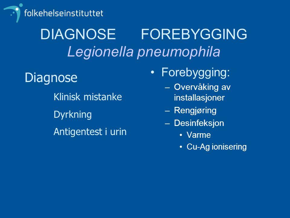 DIAGNOSE FOREBYGGING Legionella pneumophila •Forebygging: –Overvåking av installasjoner –Rengjøring –Desinfeksjon •Varme •Cu-Ag ionisering Diagnose Kl