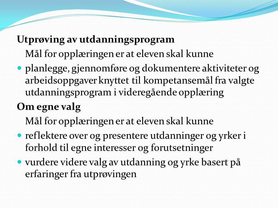 Utprøving av utdanningsprogram Mål for opplæringen er at eleven skal kunne  planlegge, gjennomføre og dokumentere aktiviteter og arbeidsoppgaver knyt