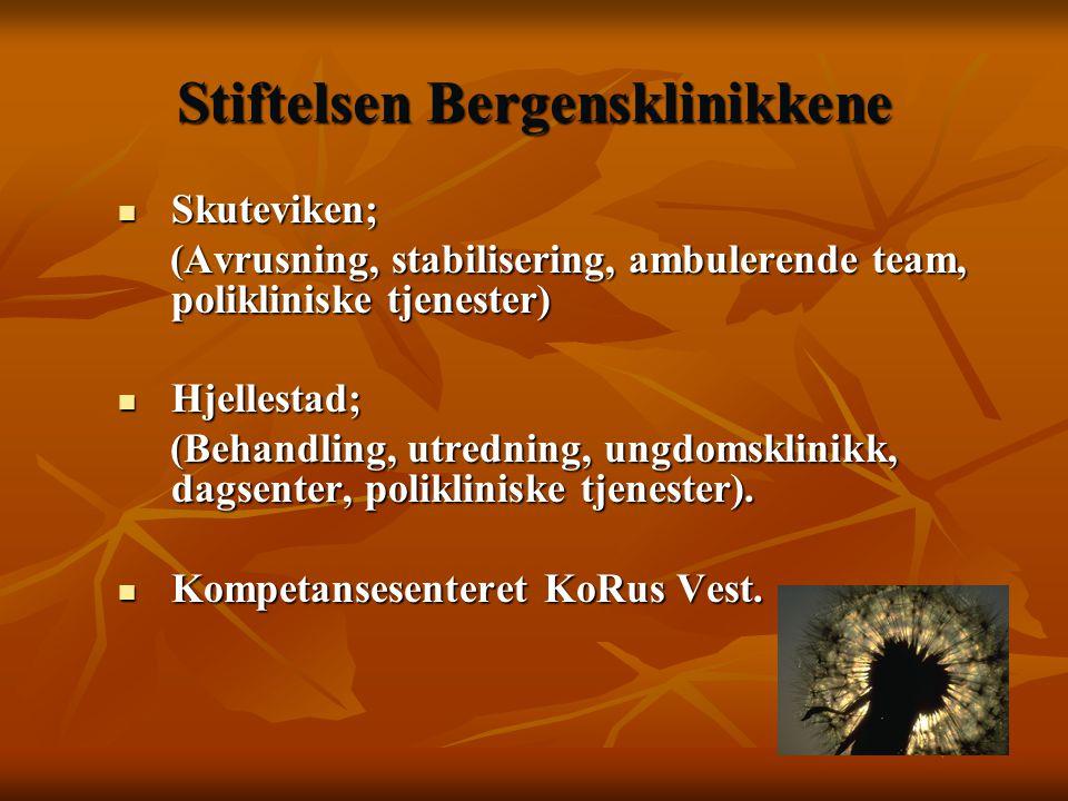 Andre behandlingstiltak  12 trinnsmodellen, AA  Evangeliesentre  Kalfaret behandlingssenter  Opp til 30 år  Bergen legevakt / Akuttmedisin  Sosialkontor  Familievern kontor  Fast lege  DPS