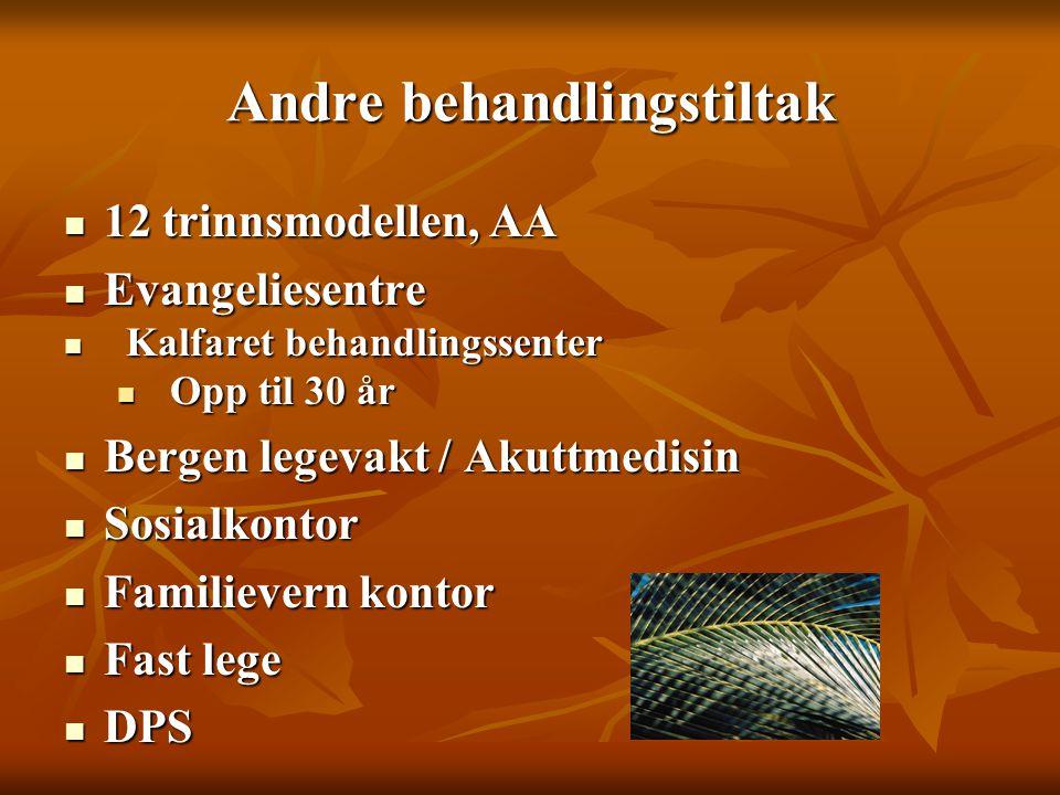 Andre behandlingstiltak  12 trinnsmodellen, AA  Evangeliesentre  Kalfaret behandlingssenter  Opp til 30 år  Bergen legevakt / Akuttmedisin  Sosi