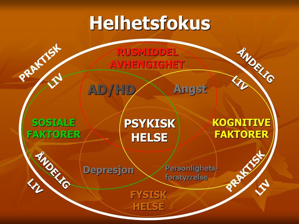 AD/HD Personlighets- forstyrrelse Depresjon Angst Angst PSYKISKHELSE FYSISKHELSE PRAKTISK LIV PRAKTISK LIV ÅNDELIGLIV ÅNDELIGLIV SOSIALEFAKTORERKOGNIT