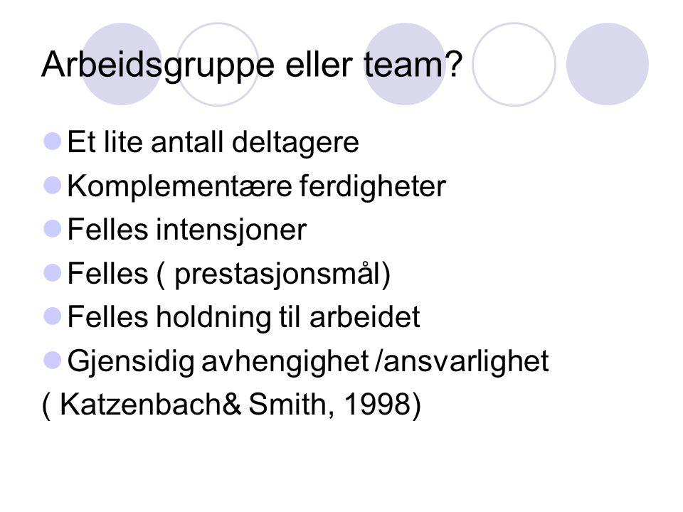 Arbeidsgruppe eller team?  Et lite antall deltagere  Komplementære ferdigheter  Felles intensjoner  Felles ( prestasjonsmål)  Felles holdning til