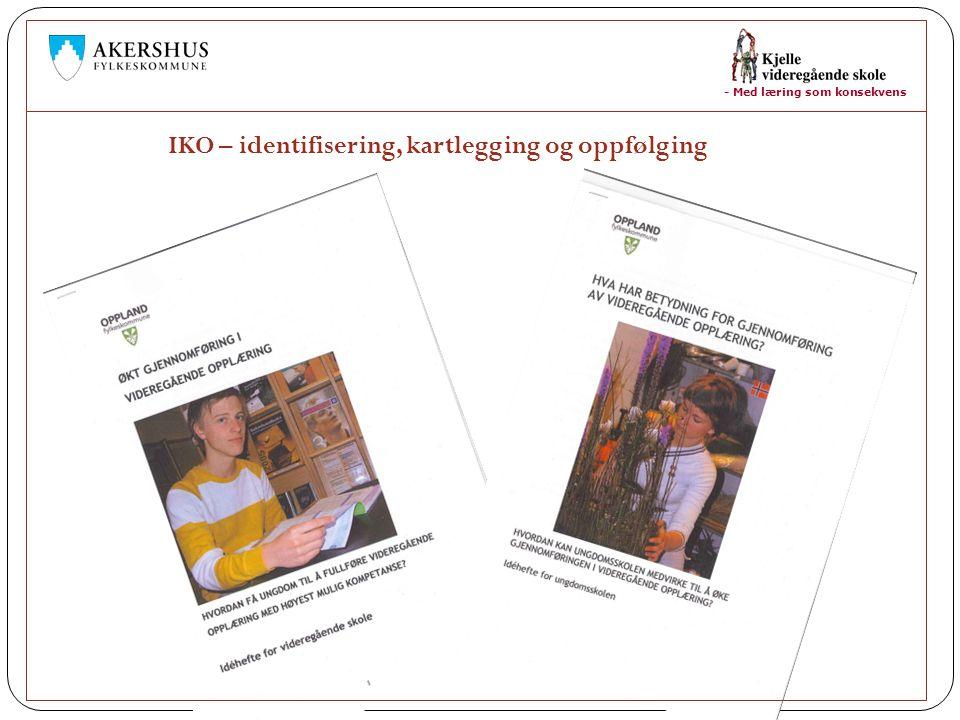 - Med læring som konsekvens IKO – identifisering, kartlegging og oppfølging