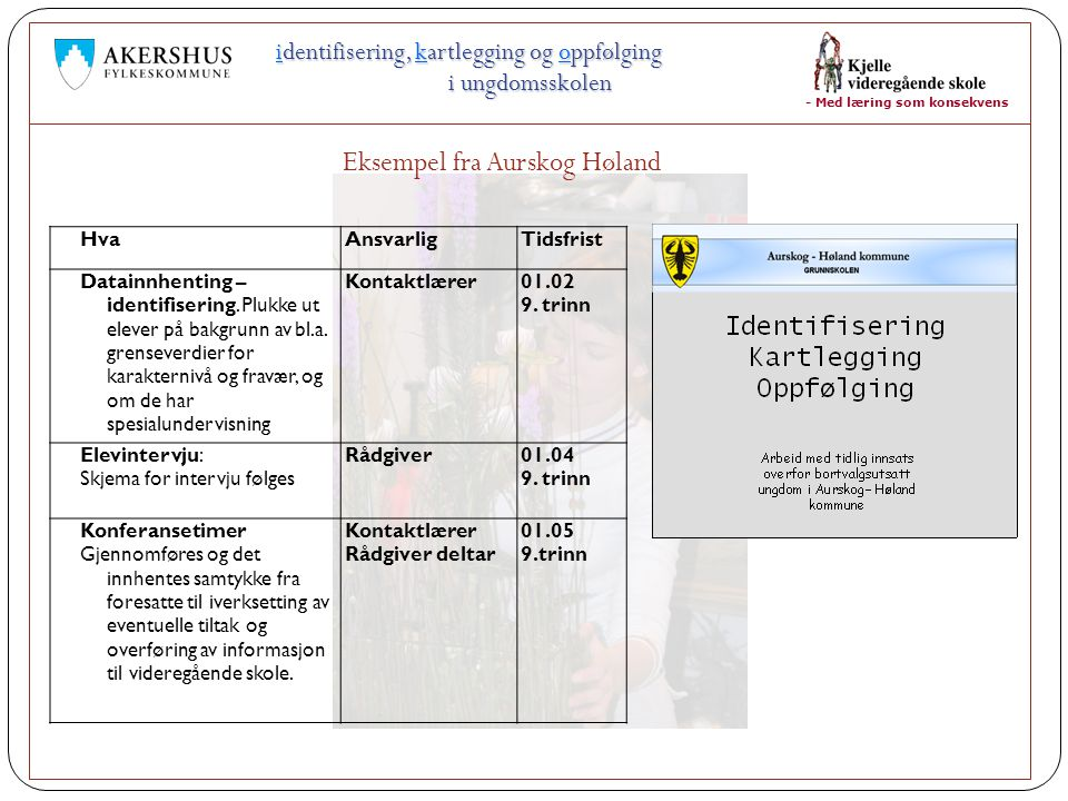 - Med læring som konsekvens identifisering, kartlegging og oppfølging i ungdomsskolen Eksempel fra Aurskog Høland HvaAnsvarligTidsfrist Datainnhenting