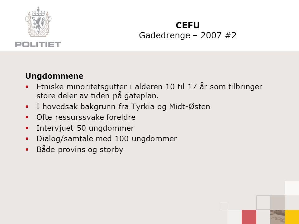 CEFU Gadedrenge – 2007 #2 Ungdommene  Etniske minoritetsgutter i alderen 10 til 17 år som tilbringer store deler av tiden på gateplan.  I hovedsak b