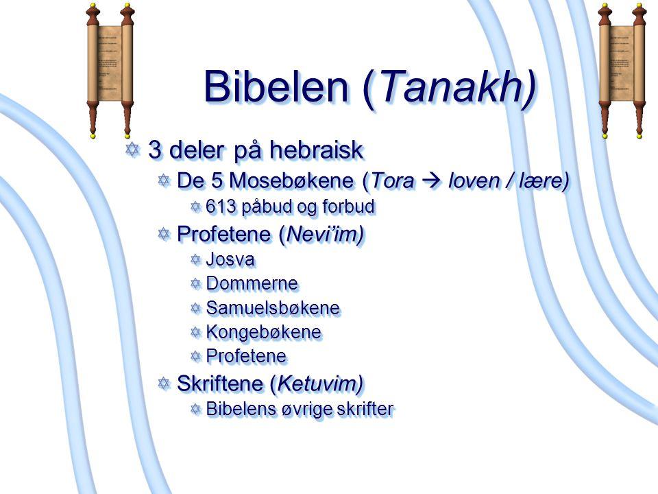 Hellige bøker Talmud Misjna – den nedskrevne versjonen av den muntlige toraen (ikke Loven) Gemara – Kommentarer og forklaringer til Misjna Det finnes to talmud; det palestinske og det babylonske Siddur – bønnesamling Også fra Salmenes bok Talmud Misjna – den nedskrevne versjonen av den muntlige toraen (ikke Loven) Gemara – Kommentarer og forklaringer til Misjna Det finnes to talmud; det palestinske og det babylonske Siddur – bønnesamling Også fra Salmenes bok