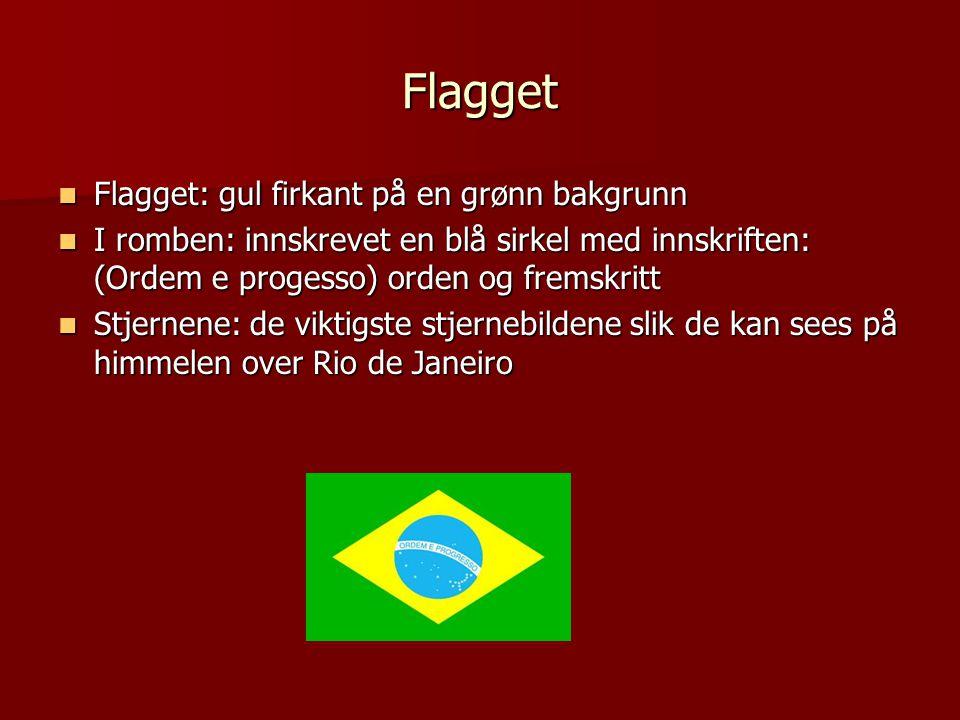 Flagget  Flagget: gul firkant på en grønn bakgrunn  I romben: innskrevet en blå sirkel med innskriften: (Ordem e progesso) orden og fremskritt  Stjernene: de viktigste stjernebildene slik de kan sees på himmelen over Rio de Janeiro