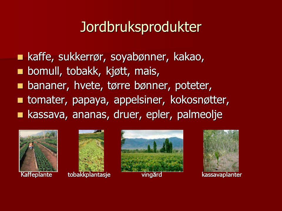 Jordbruksprodukter  kaffe, sukkerrør, soyabønner, kakao,  bomull, tobakk, kjøtt, mais,  bananer, hvete, tørre bønner, poteter,  tomater, papaya, appelsiner, kokosnøtter,  kassava, ananas, druer, epler, palmeolje Kaffeplante tobakkplantasje vingård kassavaplanter Kaffeplante tobakkplantasje vingård kassavaplanter