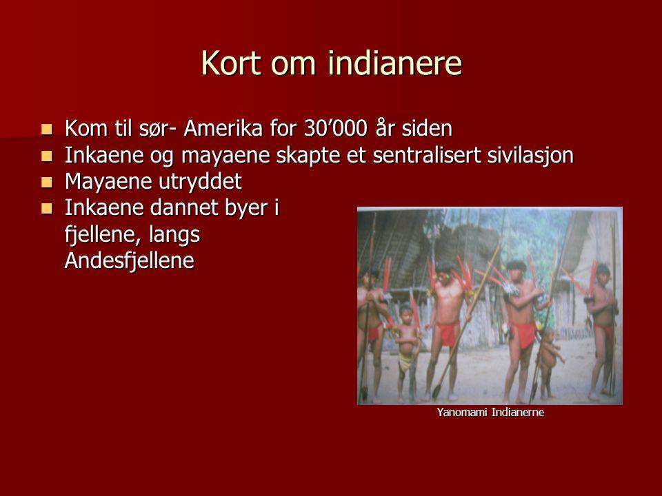 Kort om indianere  Kom til sør- Amerika for 30'000 år siden  Inkaene og mayaene skapte et sentralisert sivilasjon  Mayaene utryddet  Inkaene dannet byer i fjellene, langs Andesfjellene Yanomami Indianerne