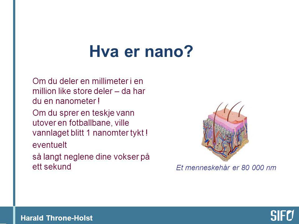 Harald Throne-Holst Hva er nano.