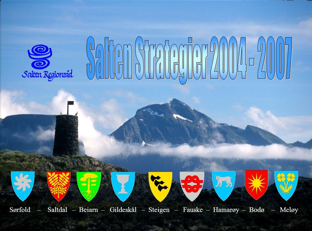 Side 9 Viktige utfordringer for Salten  Nasjonalt  Salten har viktige ressurser som gir grunnlag for framtidig verdiskaping.  Nord-Norge  Videreut