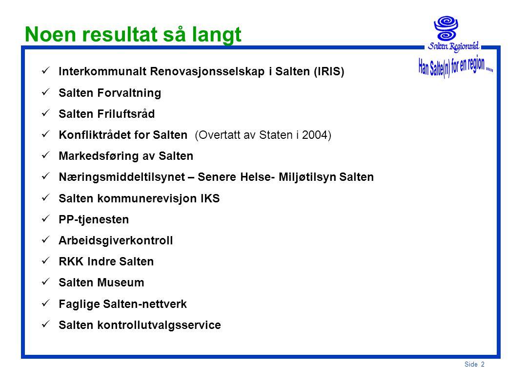 Side 1 Betydningen av et aktivt regionrådssamarbeid Salten som eksempel