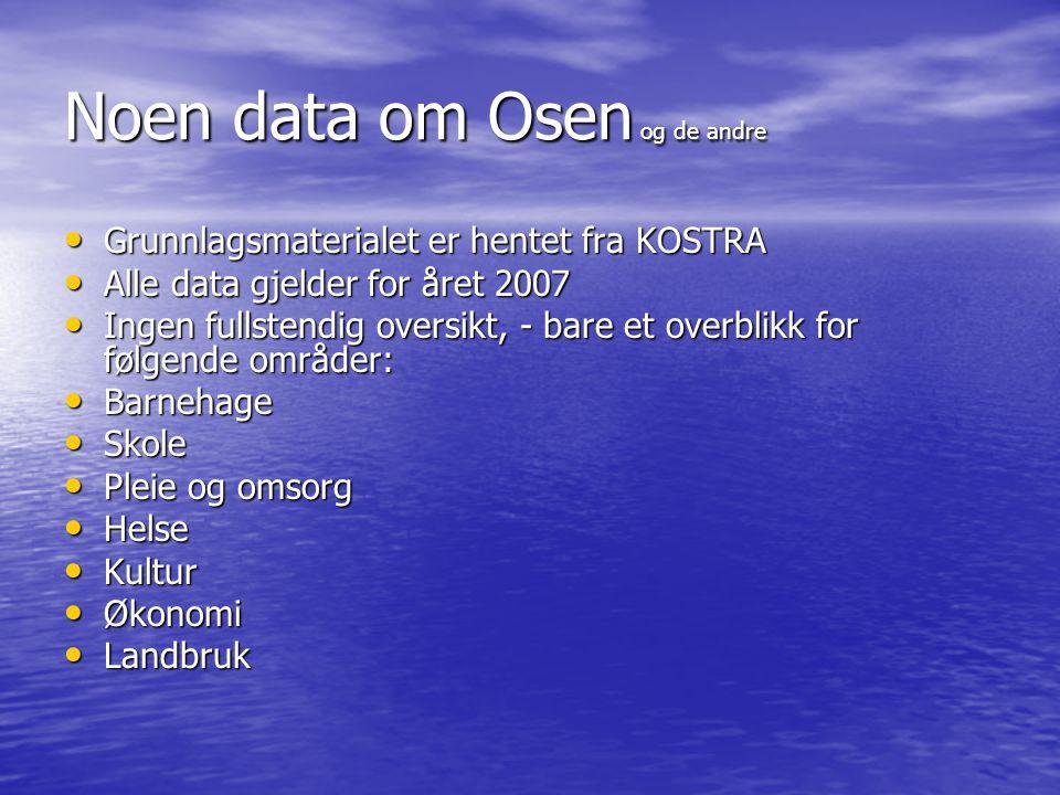 Noen data om Osen og de andre • Grunnlagsmaterialet er hentet fra KOSTRA • Alle data gjelder for året 2007 • Ingen fullstendig oversikt, - bare et ove