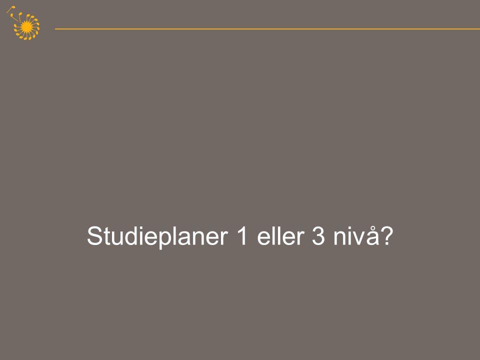 Studieplaner 1 eller 3 nivå