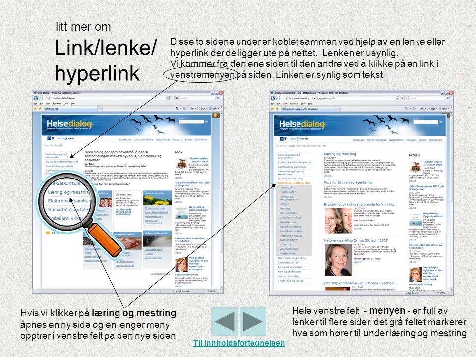Link/lenke/ hyperlink Disse to sidene under er koblet sammen ved hjelp av en lenke eller hyperlink der de ligger ute på nettet. Lenken er usynlig. Vi