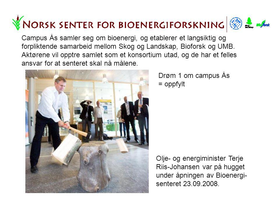 Olje- og energiminister Terje Riis-Johansen var på hugget under åpningen av Bioenergi- senteret 23.09.2008.
