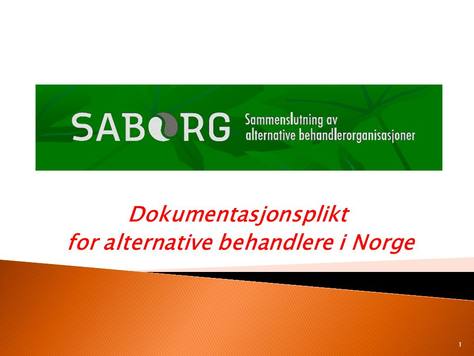 Dokumentasjonsplikt for alternative behandlere i Norge 1