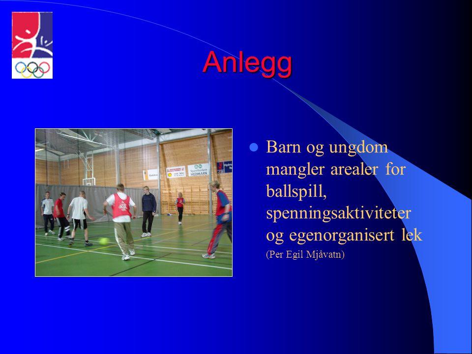 Anlegg  Barn og ungdom mangler arealer for ballspill, spenningsaktiviteter og egenorganisert lek (Per Egil Mjåvatn)