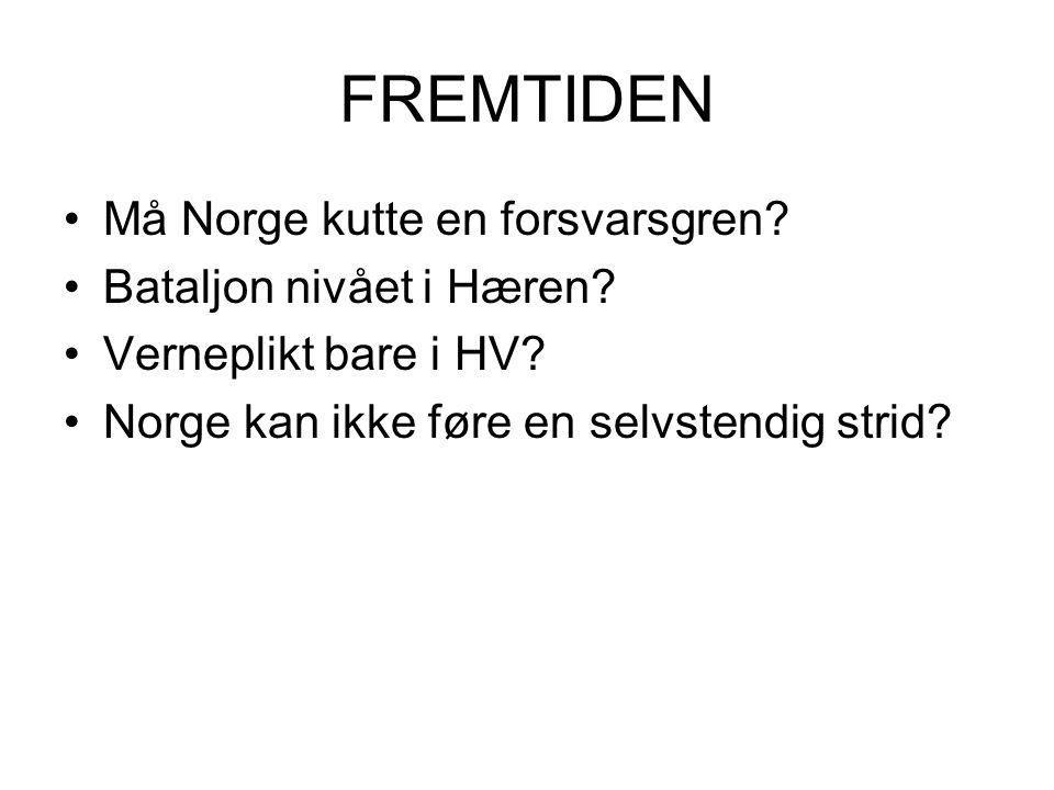 FREMTIDEN •Må Norge kutte en forsvarsgren.•Bataljon nivået i Hæren.