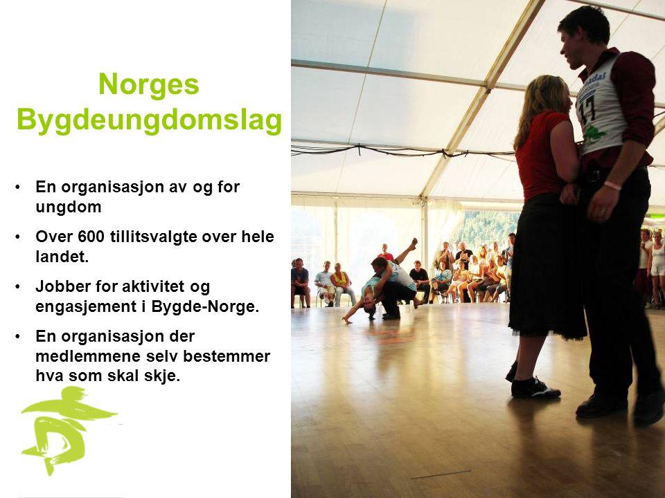 Norges Bygdeungdomslag •En organisasjon av og for ungdom •Over 600 tillitsvalgte over hele landet. •Jobber for aktivitet og engasjement i Bygde-Norge.