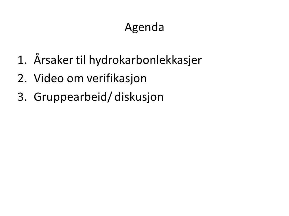 Agenda 1.Årsaker til hydrokarbonlekkasjer 2.Video om verifikasjon 3.Gruppearbeid/ diskusjon