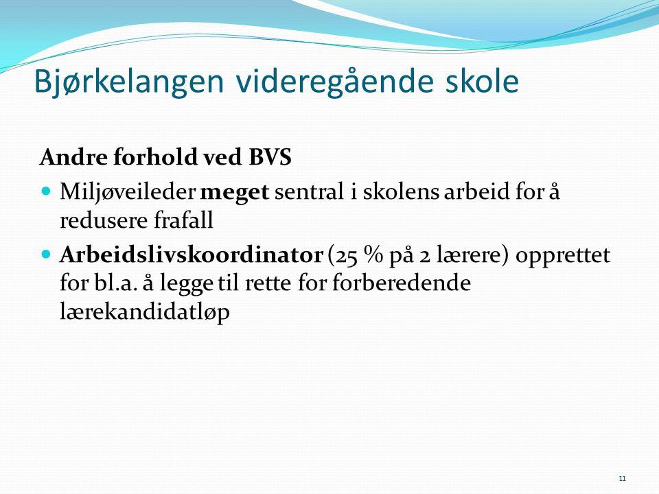 Andre forhold ved BVS  Miljøveileder meget sentral i skolens arbeid for å redusere frafall  Arbeidslivskoordinator (25 % på 2 lærere) opprettet for