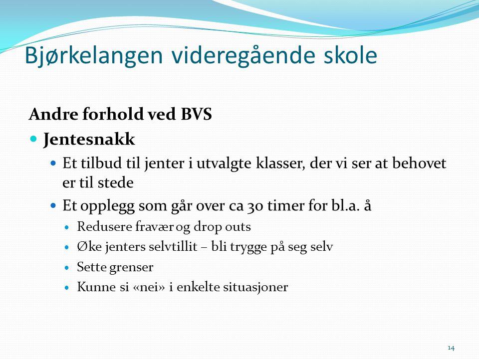 Andre forhold ved BVS  Jentesnakk  Et tilbud til jenter i utvalgte klasser, der vi ser at behovet er til stede  Et opplegg som går over ca 30 timer