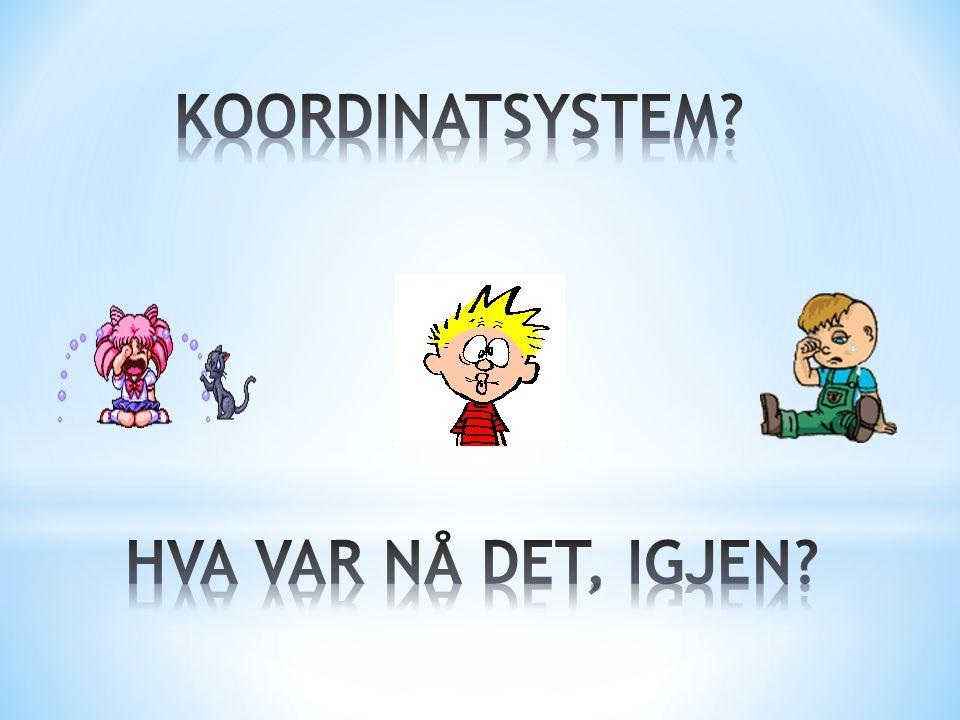 VEL, et koordinatsystem består først og fremst av to akser X-AKSEN…. … og Y-AKSEN X Y