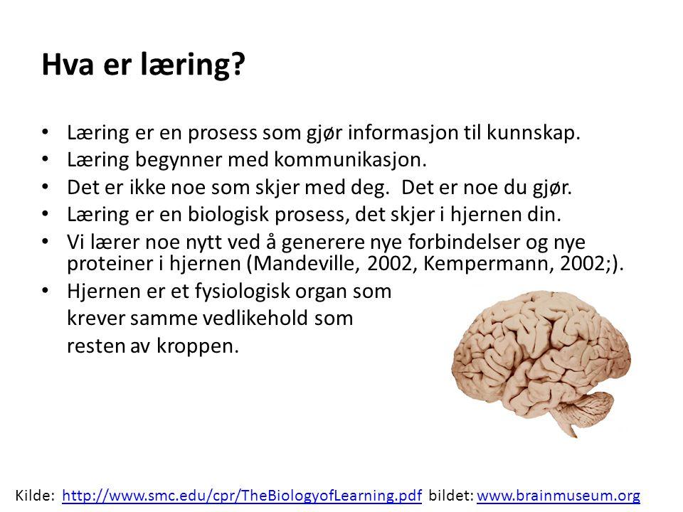 Hva er læring.• Læring er en prosess som gjør informasjon til kunnskap.