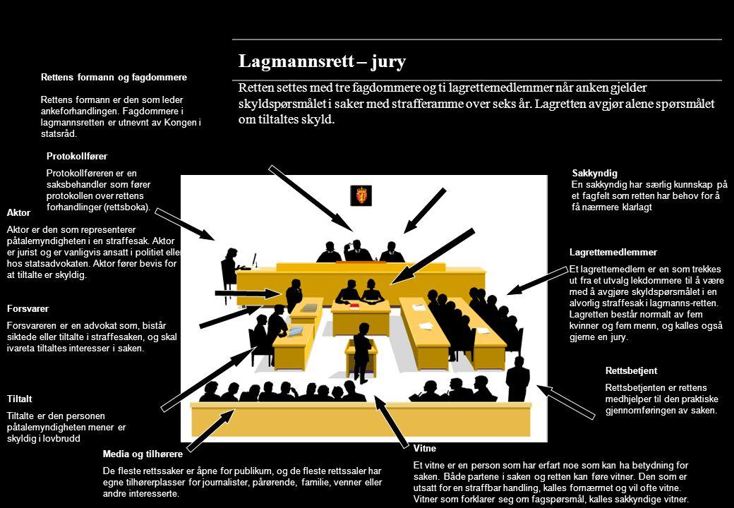 www.domstol.no og domstolenes nettsteder nOversikt over rettssystemet nHva skjer i rettssalen.
