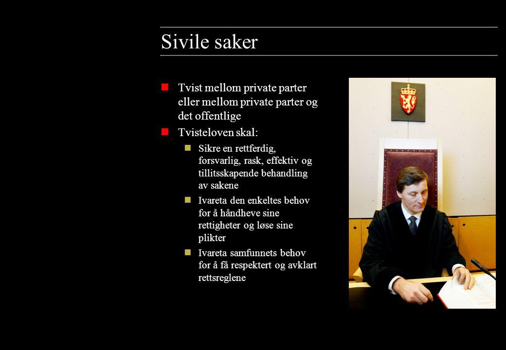 Videre om sivile saker nPartene representeres av sin prosessfullmektig (advokat).