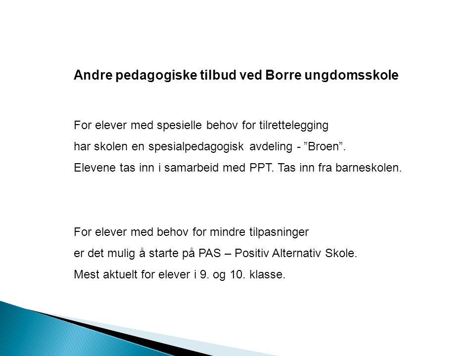 """Andre pedagogiske tilbud ved Borre ungdomsskole For elever med spesielle behov for tilrettelegging har skolen en spesialpedagogisk avdeling - """"Broen""""."""