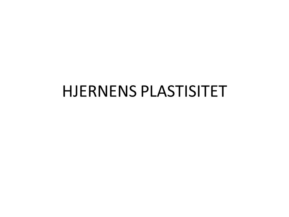 HJERNENS PLASTISITET