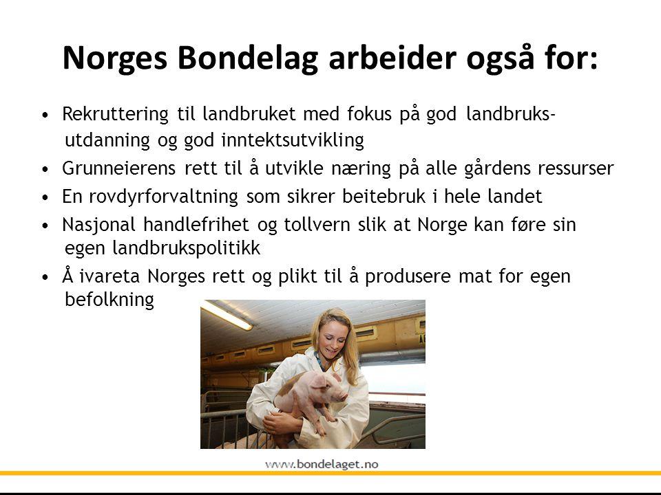 Norges Bondelag arbeider også for: • Rekruttering til landbruket med fokus på god landbruks- utdanning og god inntektsutvikling • Grunneierens rett ti
