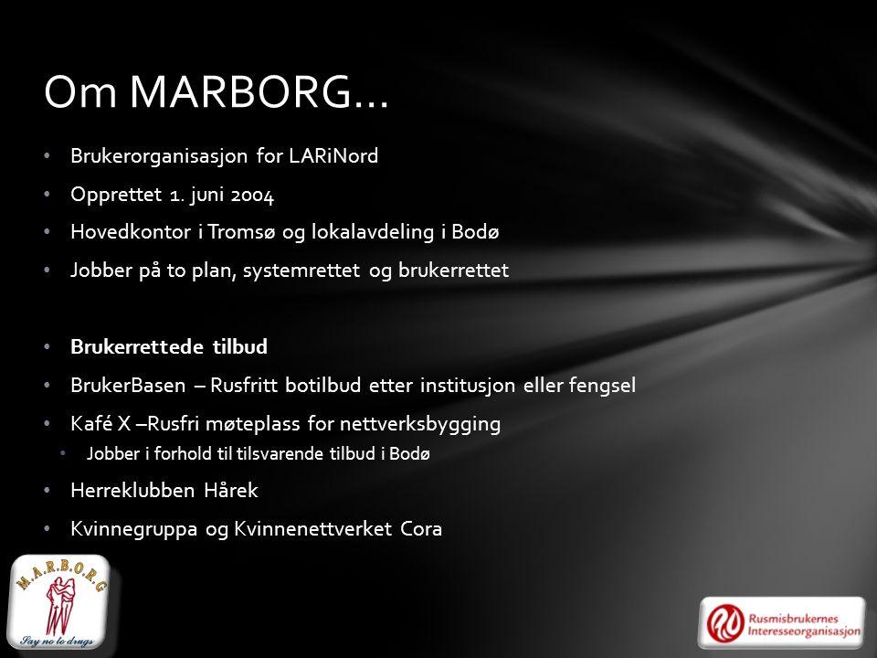• Brukerorganisasjon for LARiNord • Opprettet 1. juni 2004 • Hovedkontor i Tromsø og lokalavdeling i Bodø • Jobber på to plan, systemrettet og brukerr