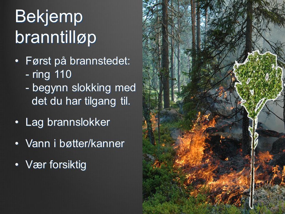 Bekjemp branntilløp •Først på brannstedet: - ring 110 - begynn slokking med det du har tilgang til. •Lag brannslokker •Vann i bøtter/kanner •Vær forsi