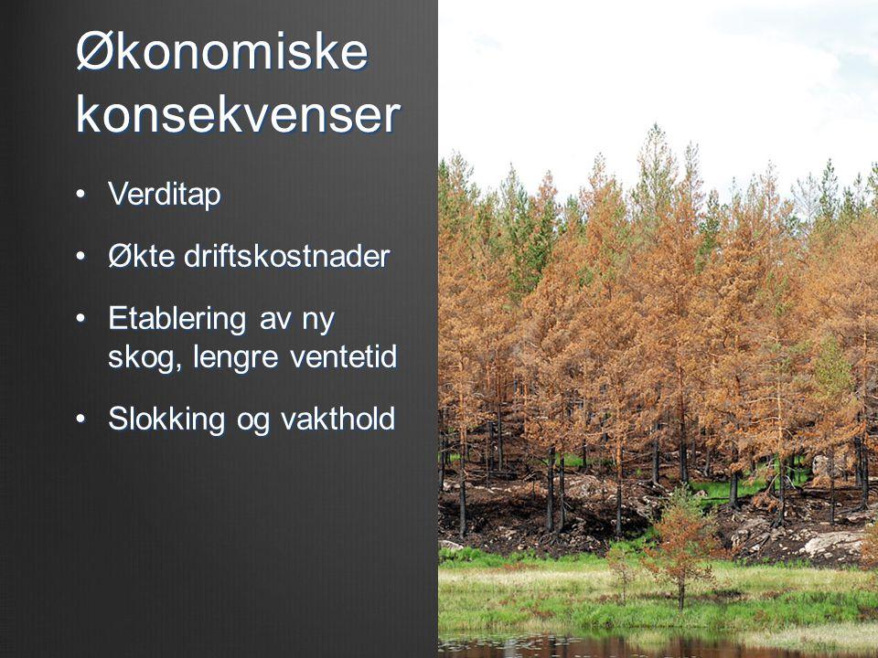 Økonomiske konsekvenser •Verditap •Økte driftskostnader •Etablering av ny skog, lengre ventetid •Slokking og vakthold