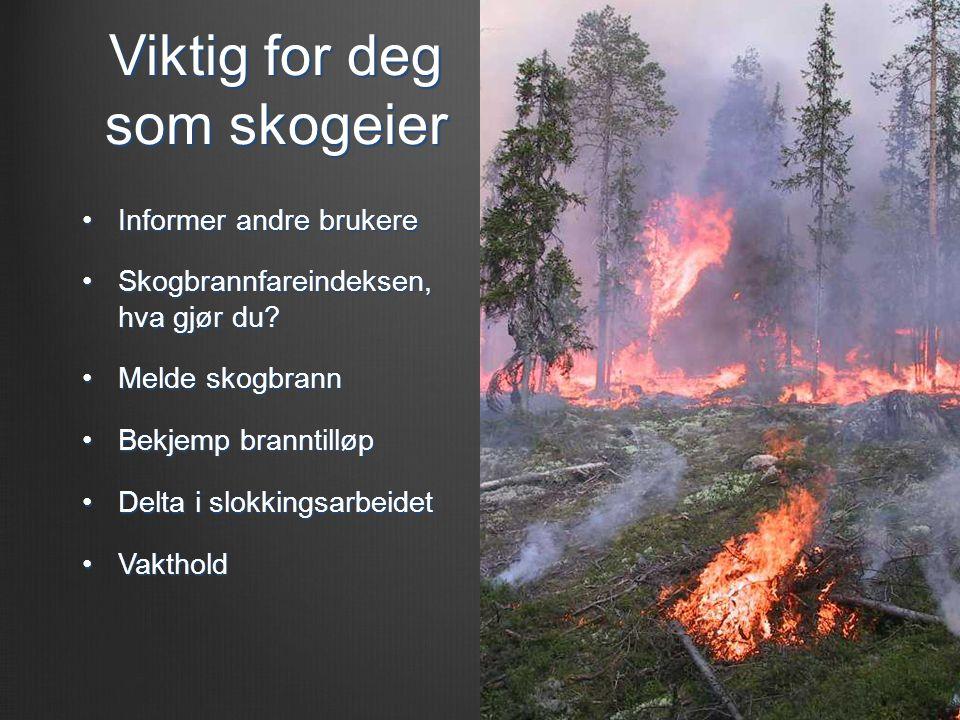 Viktig for deg som skogeier •Informer andre brukere •Skogbrannfareindeksen, hva gjør du? •Melde skogbrann •Bekjemp branntilløp •Delta i slokkingsarbei
