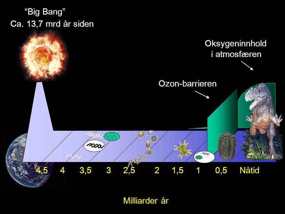 Big Bang Ca.