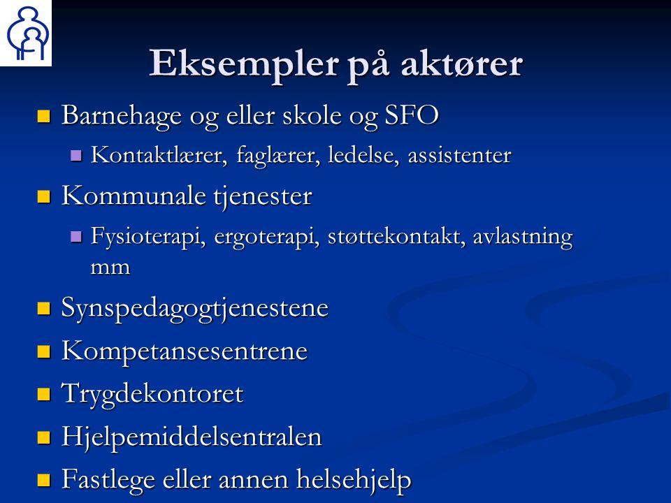 Eksempler på aktører  Barnehage og eller skole og SFO  Kontaktlærer, faglærer, ledelse, assistenter  Kommunale tjenester  Fysioterapi, ergoterapi,