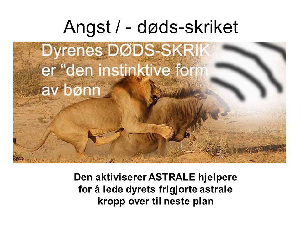 Angst / - døds-skriket Den aktiviserer ASTRALE hjelpere for å lede dyrets frigjorte astrale kropp over til neste plan