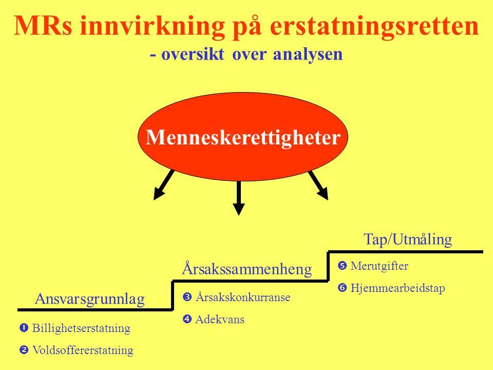 Ansvarsgrunnlag Tap/Utmåling MRs innvirkning på erstatningsretten - oversikt over analysen Menneskerettigheter  Billighetserstatning  Merutgifter 