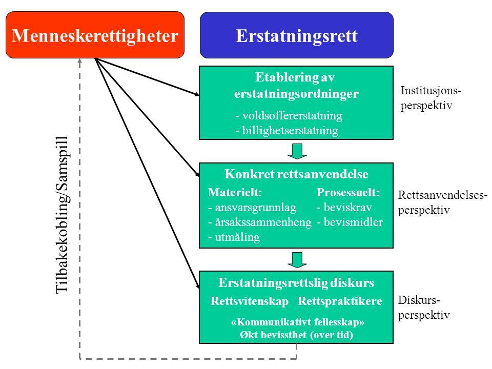 Menneskerettigheter Erstatningsrett Etablering av erstatningsordninger Konkret rettsanvendelse Materielt: - ansvarsgrunnlag - årsakssammenheng - utmål